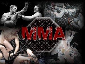 MMA-Photo-1